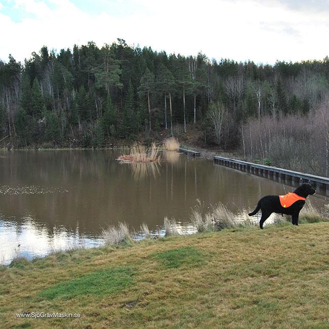 SjöGrävMaskin.se-Emma-transport+gräv-3_w650x650